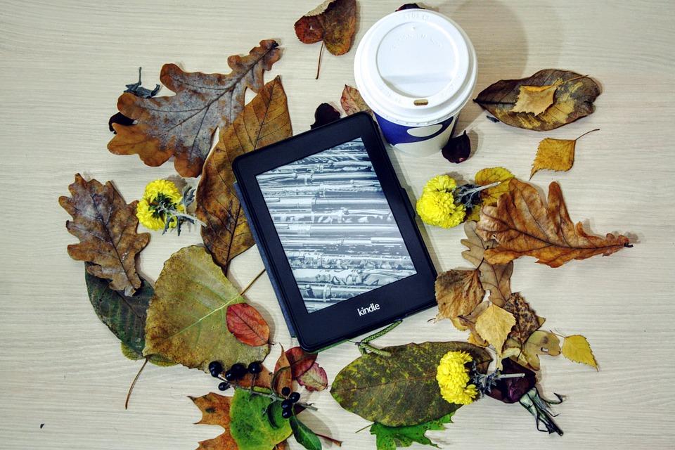 Kindle as a Rakhi Gift