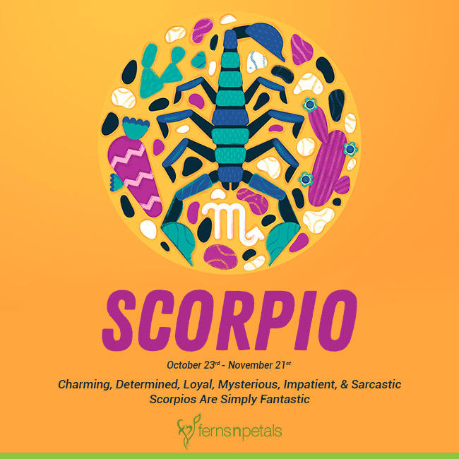 10 Reasons You Simply Cannot Ignore A Scorpio - Ferns N Petals