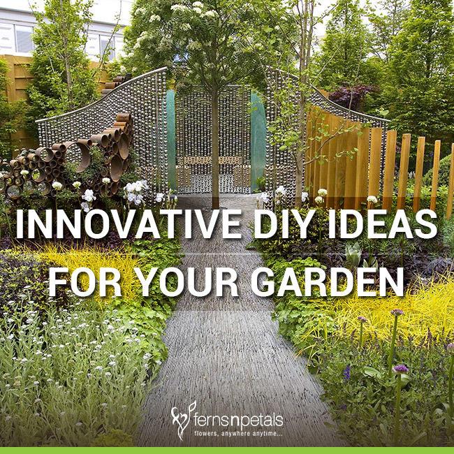 6 Innovative Diy Ideas For Your Garden Ferns N Petals