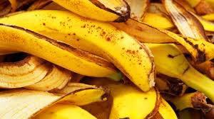 Banana Peels Plant Fertilizer