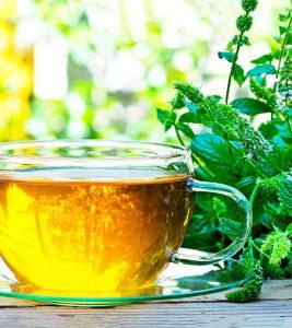 Green Tea As Plant Fertilizer