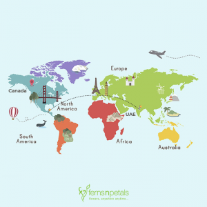 International Gift Delivery Services