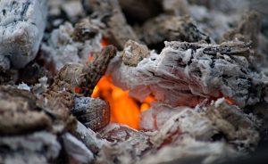 Wood Ash As Plant Fertilizer