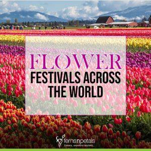 Flower festivals Across The World