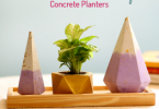 Environment Friendly Concrete Planters