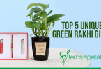 Rakhi Green Gifts