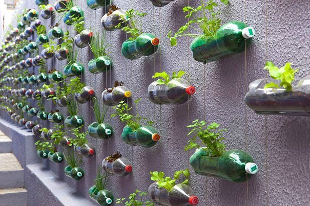 bottled vertical garden