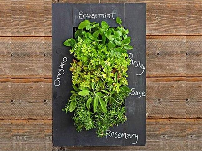 Chalkboard Planter
