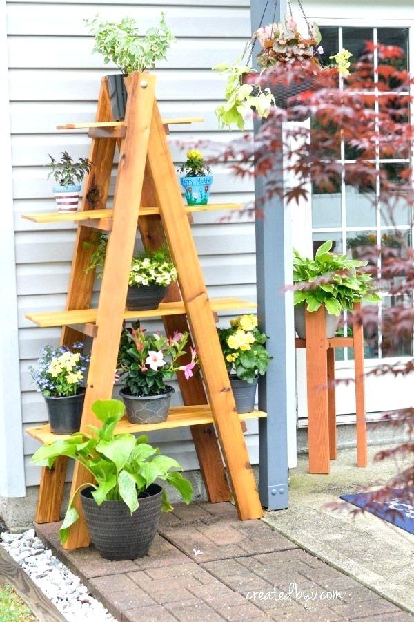Indoor Ladder Garden