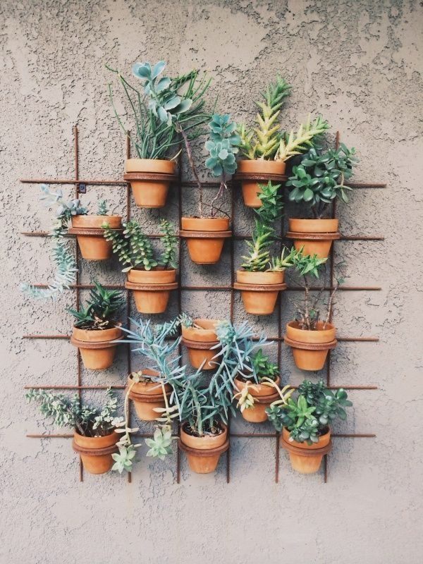 Iron Grid Pot Planter