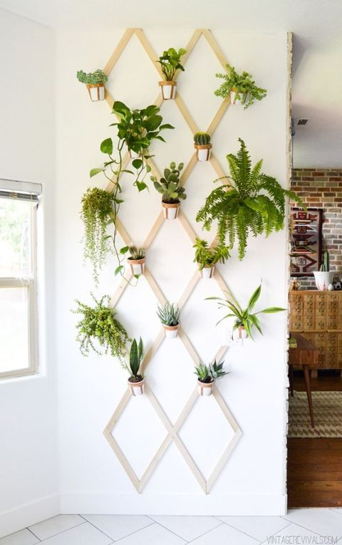 Lattice Vertical Garden