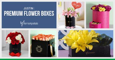 Newly Launched Premium Flower Boxes