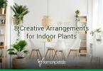 Creative Arrangements for Indoor Plants