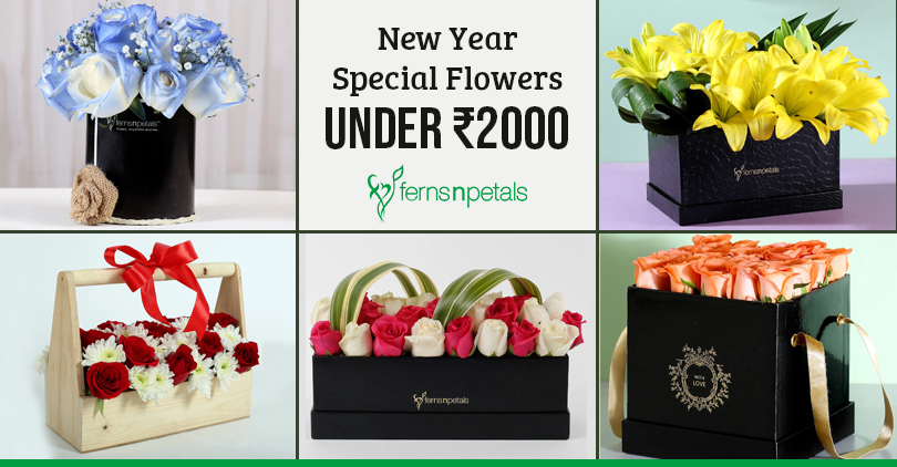 New Year Flowers under Rs. 2000