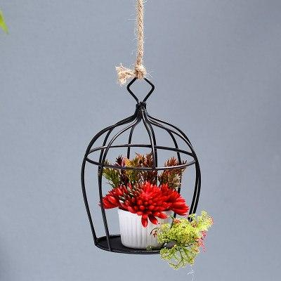 cage decoration of succulents