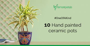 10 one of a kind ceramic planters