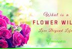 flower will