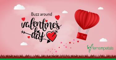 buzz around valentines day