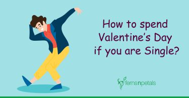 how to spend valentine's day if you are single