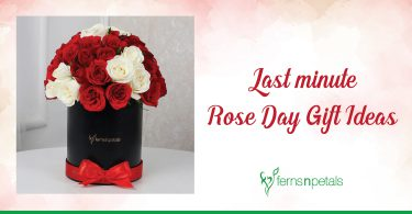 last minute rose day gift ideas-01