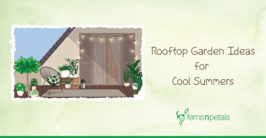 Rooftop-Garden-Ideas-for-Cool-Summers