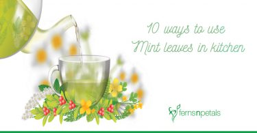 10-ways-to-use-Mint-leaves-in-kitchen