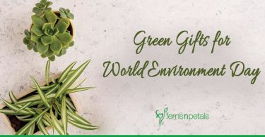 Top 8 Plants for World Environment Day