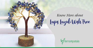 Know More about Lapis Lazuli Wish Tree