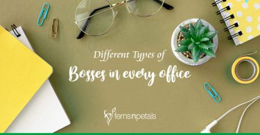 Different Types of Bosses in every office