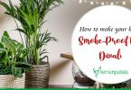 How to make your home Smoke-Proof this Diwali