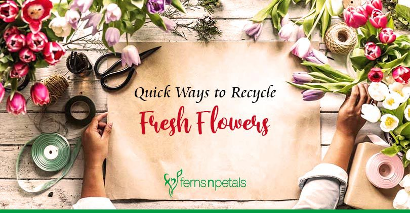 Quick Ways to Recycle Cut Flowers at Home