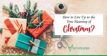 How to Live Up to the True Meaning of Christmas?