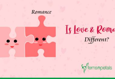 What is the Difference Between Love & Romance