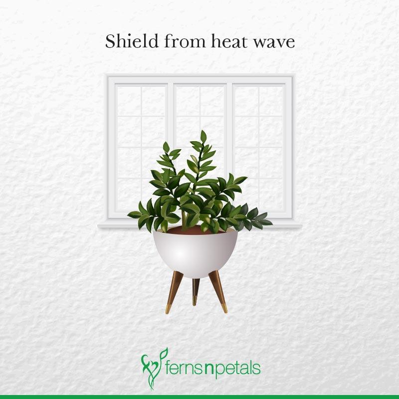 Heat wave shield