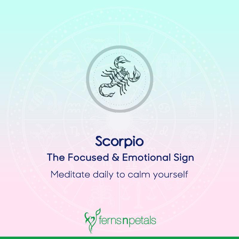 Scorpio - Focused and Emotional Signs