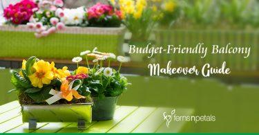 Budget-Friendly Balcony Makeover Guide