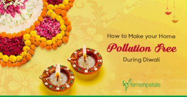 How to Make your Home pollution free during Diwali